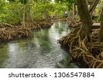 pristine and tranquil mangrove... | Shutterstock . vector #1306547884