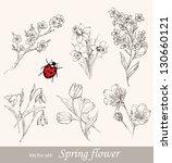 Spring Flower Set. Vintage...