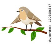 forest bird sitting on a tree... | Shutterstock .eps vector #1306606567