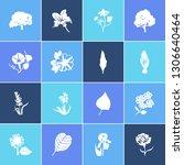 flora icon set and aloe vera... | Shutterstock .eps vector #1306640464