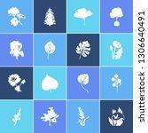 flower  floral  plant icon set...
