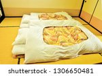 twin futon beds consist are... | Shutterstock . vector #1306650481