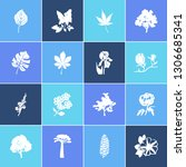 flora icon set and plumbago... | Shutterstock .eps vector #1306685341