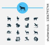 zoo icons set with penguin ... | Shutterstock . vector #1306795744
