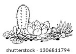 cactus and succulents group....   Shutterstock .eps vector #1306811794
