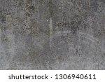 gray green yellow moss on the...   Shutterstock . vector #1306940611