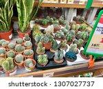 minsk  minskaya  belarus 07... | Shutterstock . vector #1307027737