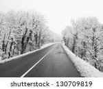 Beautiful Snow Forest And Road
