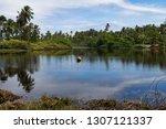 calm lake of brazil surrounded... | Shutterstock . vector #1307121337