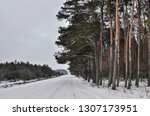 road near the forest in winter | Shutterstock . vector #1307173951