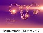 ovary and uterus shape...   Shutterstock .eps vector #1307257717