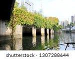 tokyo  japan. 2018 oct 24th....   Shutterstock . vector #1307288644