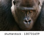 Large Gorilla Face With...