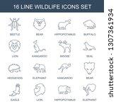 16 wildlife icons. trendy... | Shutterstock .eps vector #1307361934