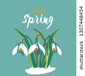 spring snowdrops in the snow.... | Shutterstock .eps vector #1307448454