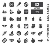 ripe icon set. collection of 32 ... | Shutterstock .eps vector #1307552581