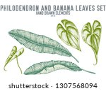 vector collection of hand drawn ... | Shutterstock .eps vector #1307568094