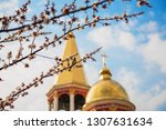 a blooming tree against an... | Shutterstock . vector #1307631634