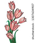 bouquet with tulips isolated on ...   Shutterstock .eps vector #1307634907