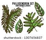 vector collection of hand drawn ... | Shutterstock .eps vector #1307656837