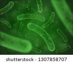 bacteria biological concept.... | Shutterstock . vector #1307858707