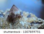 meditation grid kit. quartz... | Shutterstock . vector #1307859751