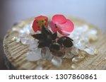 healing crystals  clear quartz  ... | Shutterstock . vector #1307860861