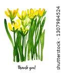 crocus. illustration flowers....   Shutterstock . vector #1307984524