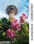 singapore  singapore   january... | Shutterstock . vector #1308023587