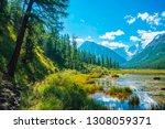 beautiful glacier reflected in... | Shutterstock . vector #1308059371