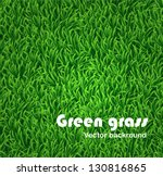 green grass background. vector... | Shutterstock .eps vector #130816865