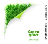green curled corner and grass... | Shutterstock .eps vector #130816871