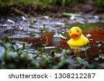 Dirty Rubber Duck In Cigarette...