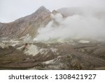 active volcano with sulphuric... | Shutterstock . vector #1308421927