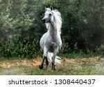 snow white arabian stallion   Shutterstock . vector #1308440437