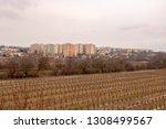 communist socialist...   Shutterstock . vector #1308499567