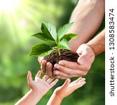 hands of a child taking a plant ...   Shutterstock . vector #1308583474