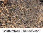 trip to pathos  cyprus. rocky...   Shutterstock . vector #1308599854