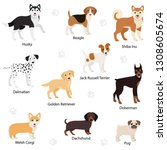 dogs of different breed set.... | Shutterstock .eps vector #1308605674