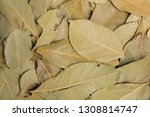 dried bay leaves. best natural... | Shutterstock . vector #1308814747