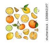 citrus. set of fruit. fresh... | Shutterstock .eps vector #1308842197