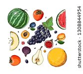 fruits drawn by a line on a... | Shutterstock .eps vector #1308844954