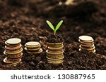 golden coins in soil with young ... | Shutterstock . vector #130887965