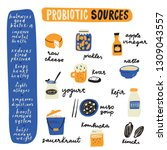 probiotic sources. hand drawn... | Shutterstock .eps vector #1309043557