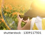 asian woman taking a picture... | Shutterstock . vector #1309117501
