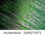 illustration silver and green... | Shutterstock . vector #1309271971