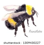Watercolor Bumblebee In Flight. ...