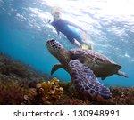 Underwater Shoot Of A Snorkele...