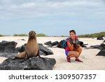 animal wildlife nature... | Shutterstock . vector #1309507357