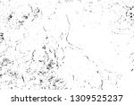black and white grunge urban... | Shutterstock .eps vector #1309525237
